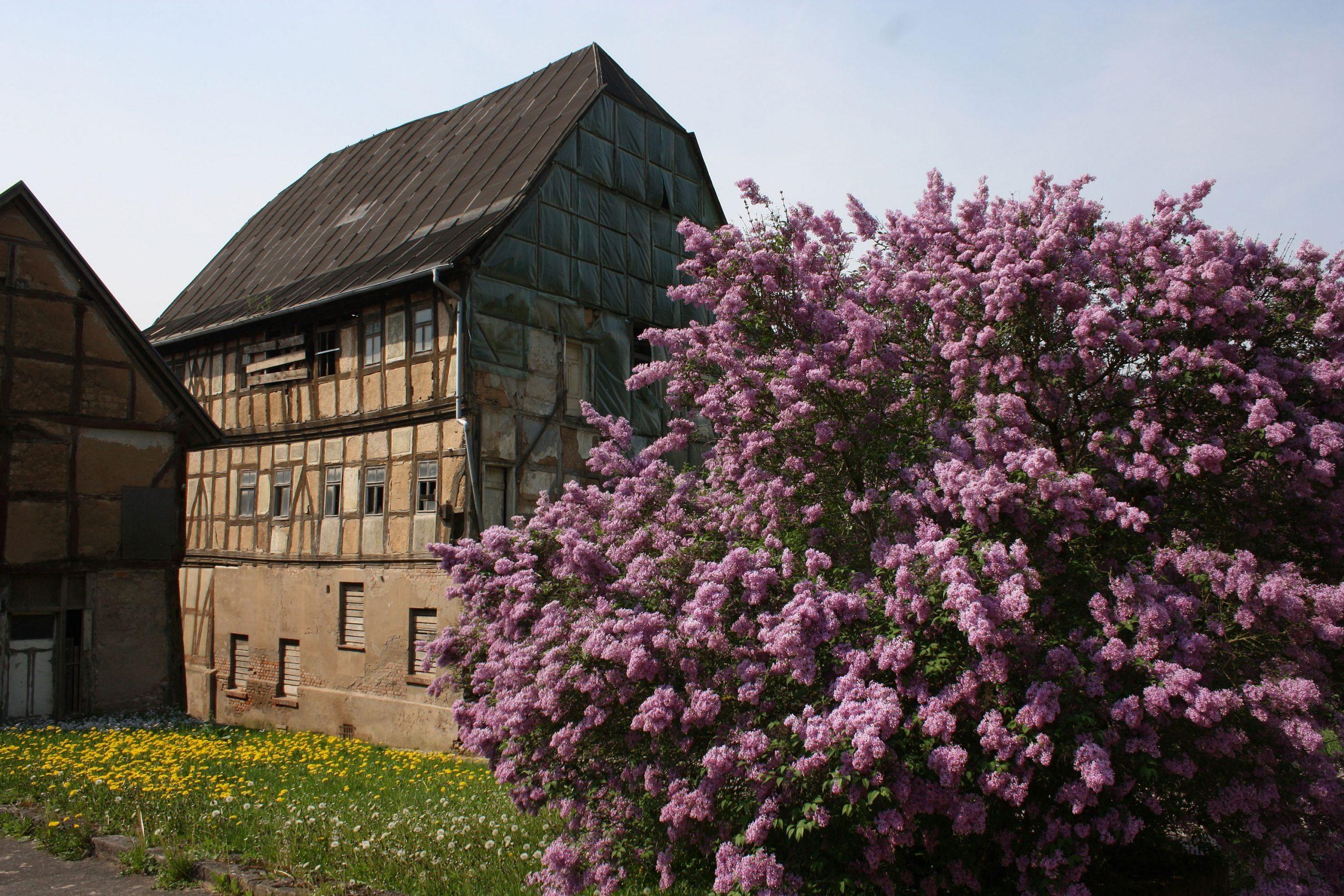 Hessischer Hof Treffurt