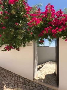 Casa Lucia Entrance